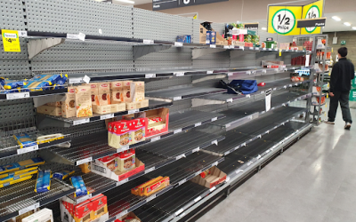 FOOD INSECURITY: FOOD APARTHEID EXISTED BEFORE THE PANDEMIC, IT WILL CONTINUE TO EXIST WHEN WE RETURN TO 'BUSINESS AS USUAL'