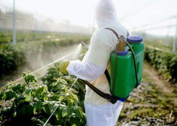 pesticide-spraying-paraquat